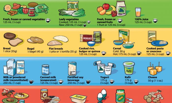 The diet recommendations illustrated in Canada's Food Guide.
