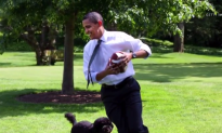Trump Could Be First President With No Pet in Over a Century (Video)