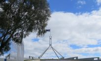 Australian Senate Moves Against Unethical Organ Procurement