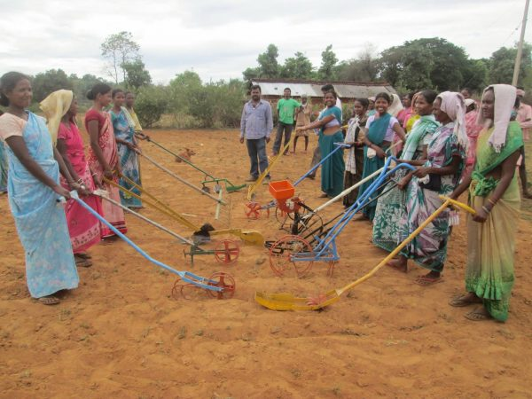 Field Day with implements from Agro-vision in Nagpur, Jharkhand, India. (Courtesy of SRI-Rice)