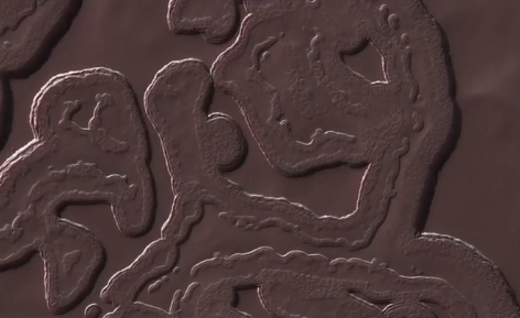 NASA Shares Image of Really Bizarre Landscape on Mars (Video)