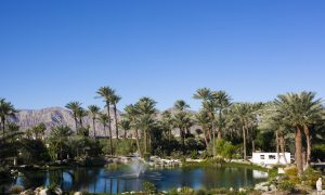 Palm Springs: An Oasis in the Desert