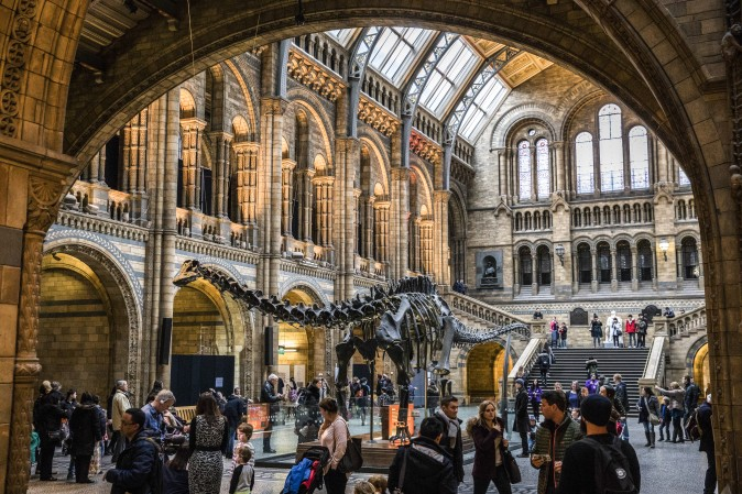 Visitors walk around Dippy the Diplodocus at the Natural History Museum in London on Jan. 4, 2017. The 70-foot-long plaster-cast sauropod replica, which is made up of 292 bones, is set to leave the museum, where it has been over 100 years, on a national tour. Dippy will be replaced by a real skeleton of a blue whale, which will be hung from the ceiling. (Dan Kitwood/Getty Images)