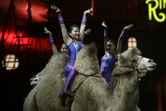 Ringling Bros. and Barnum & Bailey acrobats ride camels during a performance in Orlando, Fla., on Jan. 14, 2017. (AP Photo/Chris O'Meara)