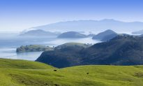The Secret's Out: New Zealand's Favourite Holiday Spot