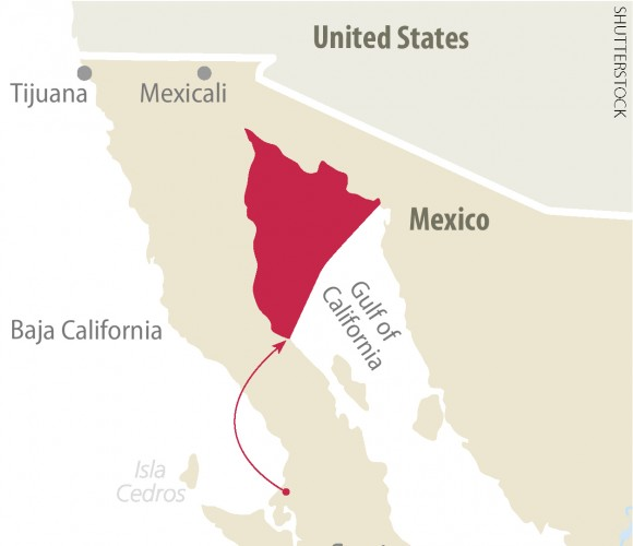 Area showing where the remaining vaquita live, in the  uppermost tip of Mexico's Gulf of California.