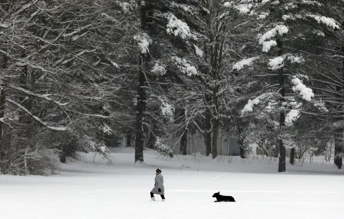 A woman walks with her dog in a field of fresh snow in Gates Mills, Ohio, on Jan. 31, 2017. (AP Photo/Tony Dejak)