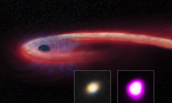 A Black Hole Has Been Found Devouring a Star For 10 Years (Video)