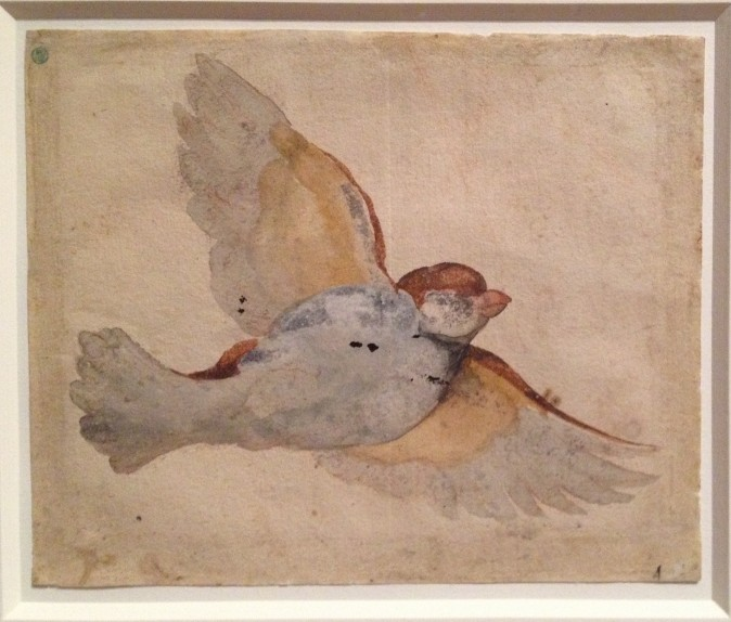 """""""Flying Sparrow,"""" circa 1517–1518, by Giovanni da Udine (Italian, 1487–1561) Watercolor and gouache over red chalk, Nationalmuseum of Sweden. (Milene Fernandez/Epoch Times)"""