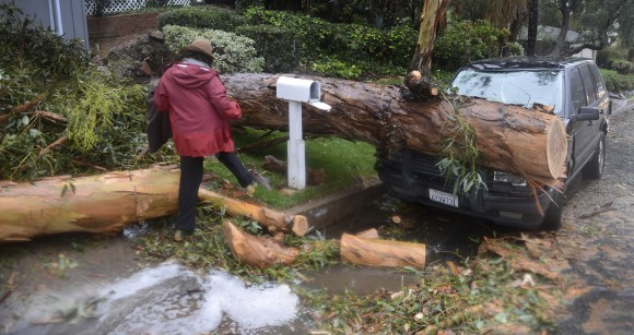 """Lori Kahn steps over a branch of a tree that fell on her family's Range Rover Friday, Feb. 17, 2017,  in Laguna Beach, Calif. Kahn said that no one was injured in the incident. As a Laguna Beach city trolly drove by Kahn said """"Well, I guess we'e a tourist attraction now.""""  (Photo by Bill Alkofer/The Orange County Register via AP)"""