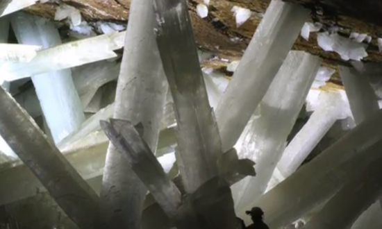Life Forms Found in Mexico's Underground Crystals May be 50,000 Years Old (Video)