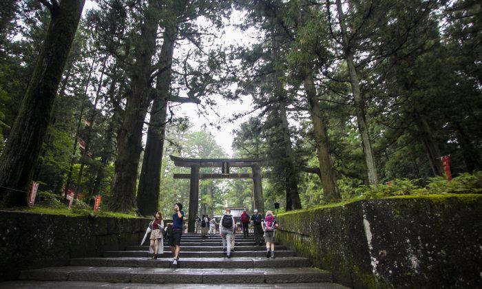 Stairs leading to Toshogu Shrine in Nikko, Japan. (Annie Wu/Epoch Times)