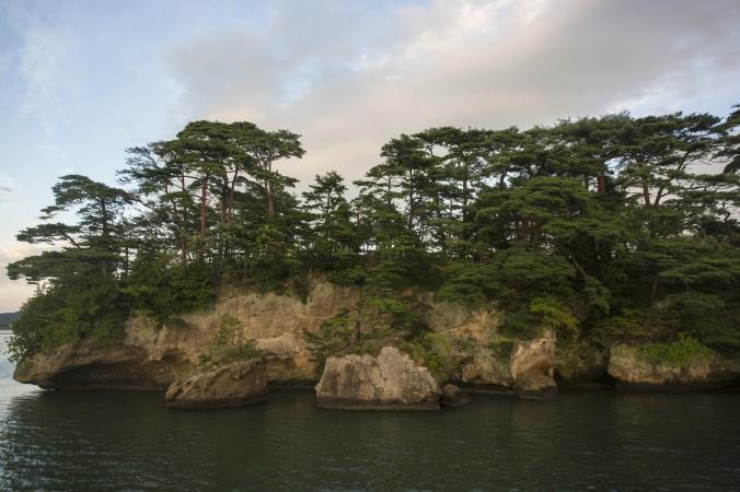 Pine trees on Fukuura Island in Matsushima Bay. (Annie Wu/Epoch Times)