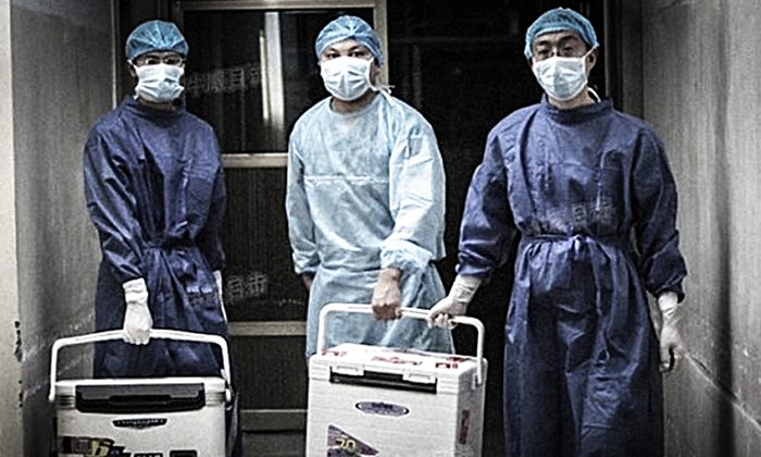 organ harvesting in china The authors of a new report about state-led organ harvesting in china presented their findings at the national press club on june 22, calling it a slow motion genocide that has led to likely.