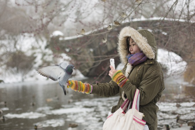 Classical pianist Aliya Turetayeva gets a last visit from a pigeon after feeding dozens of birds in Central Park, New York, on March 14. (Samira Bouaou/Epoch Times)