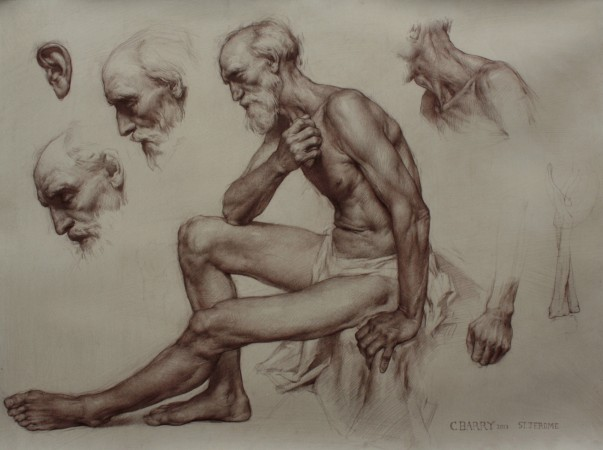 """St. Jerome Study,"" 2014, by Colleen Barry. Brown pencil on toned paper, 22 inches by 30 inches. (Courtesy of Colleen Barry)"
