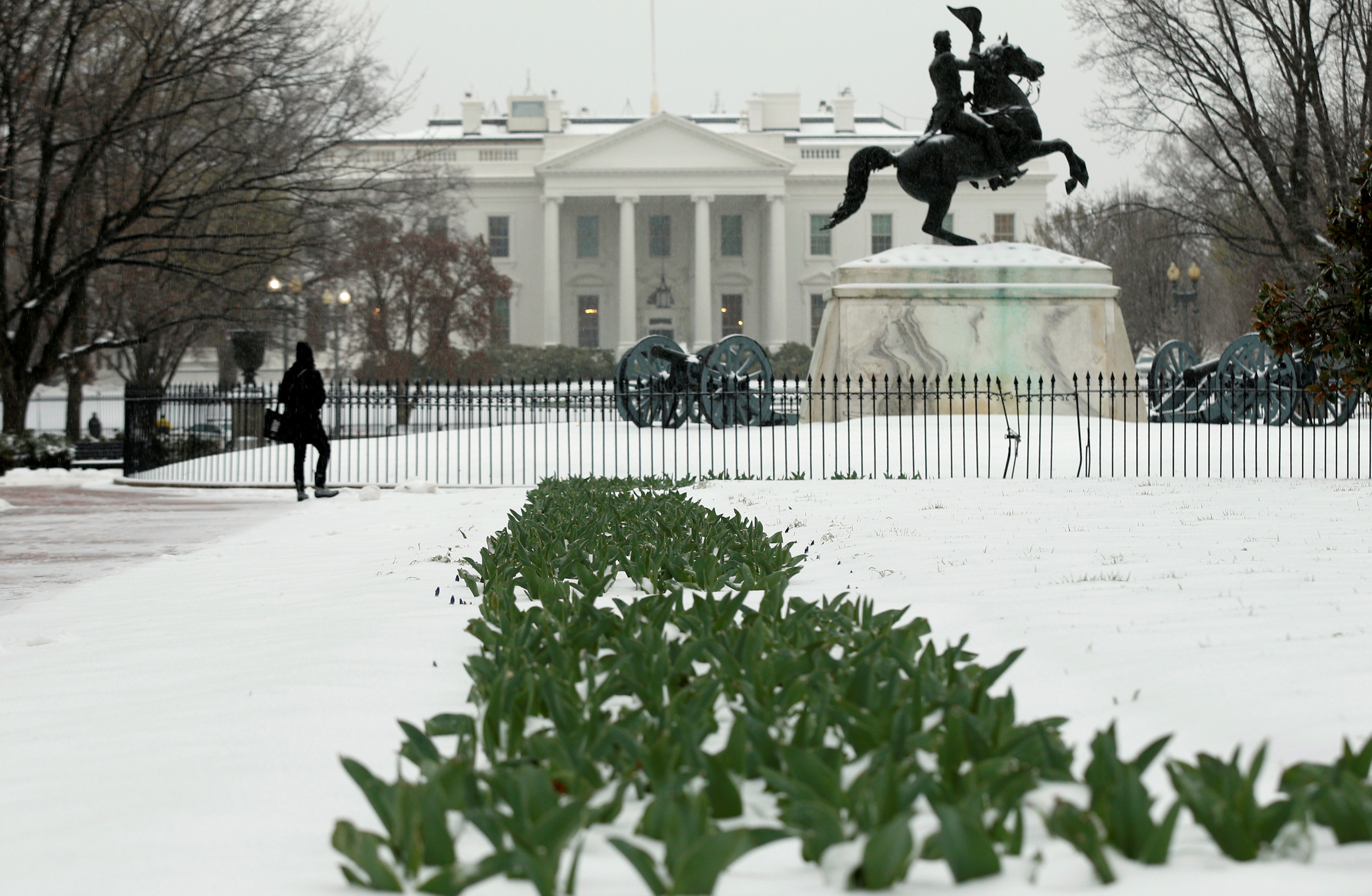 Person in Custody After Incident at White House Gates: Secret Service