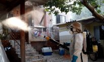 Zika's Link to Birth Defects Overstated, Say Researchers