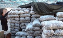 Beefing up Traceability Measures Key in Curbing Food Fraud, Expert Says