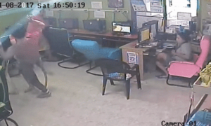 Snake Attacks Man in Internet Cafe