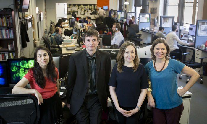 (L–R) Award winners Channaly Philipp, Petr Svab, Luba Pishchik, and Charlotte Cuthbertson. (The Epoch Times)
