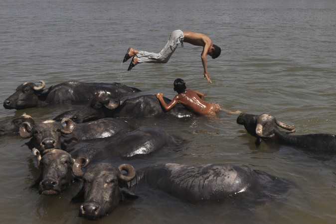 Indian nomad youths play in the water with their herd of buffaloes as they cool off in the Tawi River on the outskirts of Jammu on April 20, 2017. (-/AFP/Getty Images)