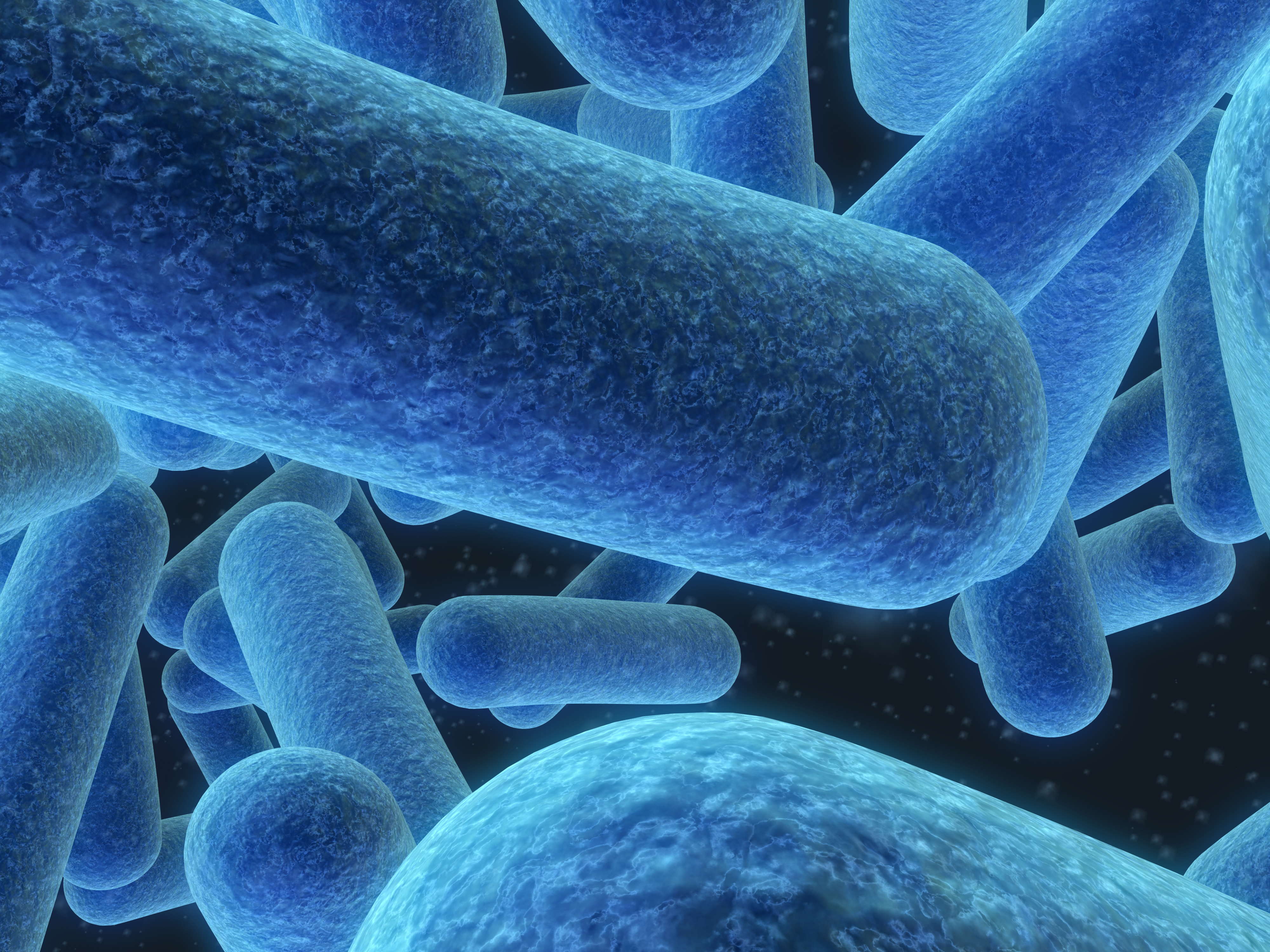Microbiome: The Body's Great Conductor