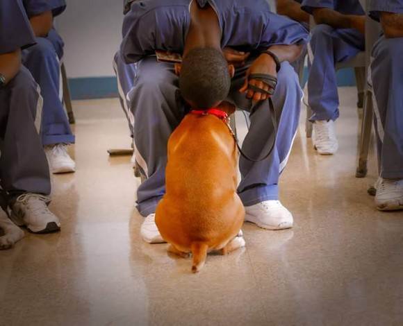 A prison inmate and TAILS program participant with his dog.  (Courtesy of Craig O'Neal)