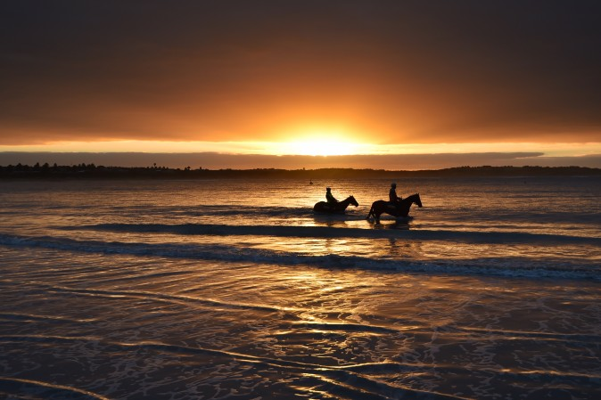 Horses from the Darren Weir stable train during a trackwork session at Lady Bay beach ahead of the Warrnambool Racing Carnival in Warrnambool, Australia, on May 3, 2017. (Vince Caligiuri/Getty Images)