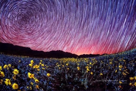 Death Valley National Park. (Courtesy of Gavin Heffernan and Harun Mehmedinović)