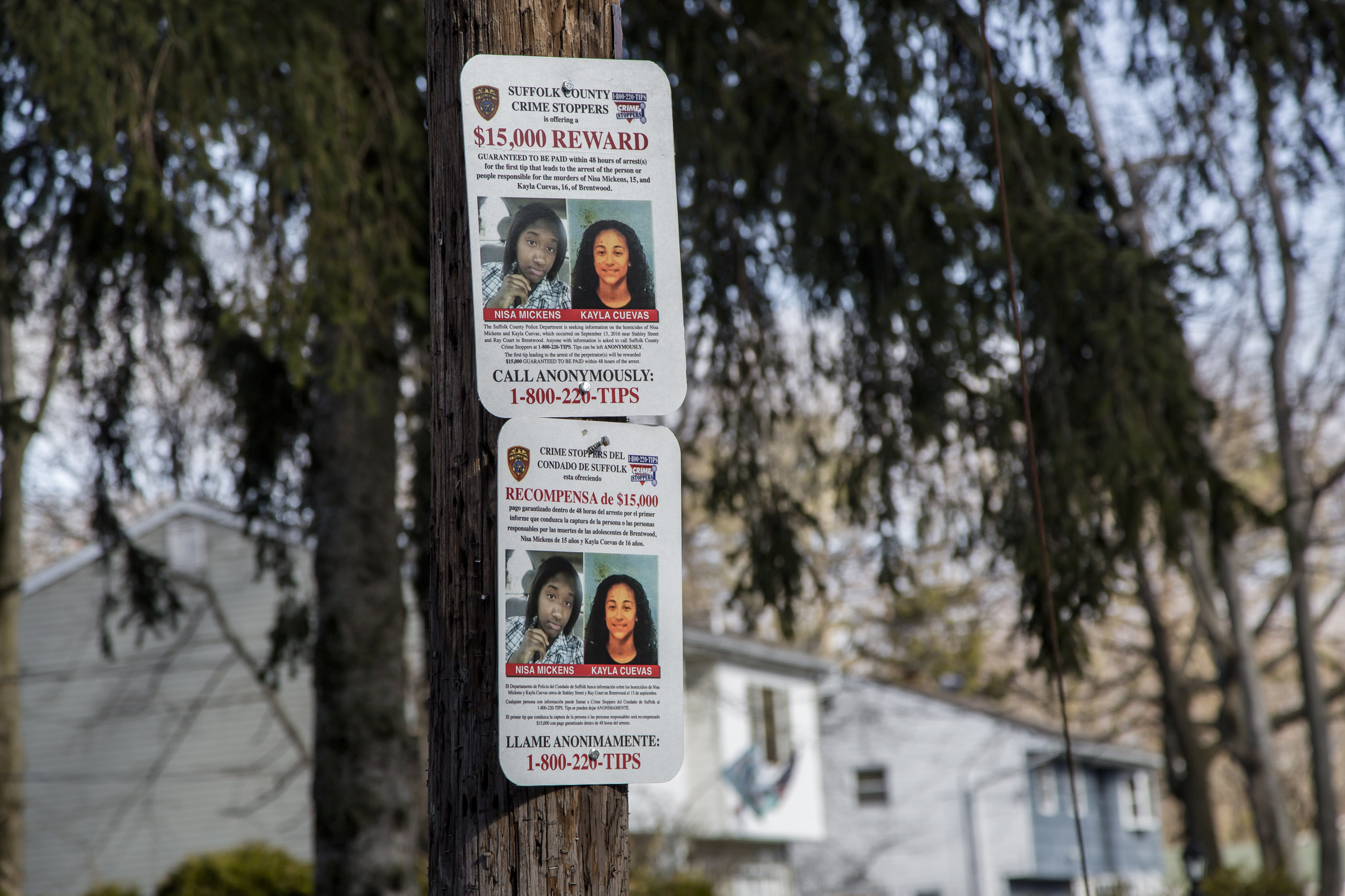 A sign offering a reward for information regarding the murders of Nisa Mickens and Kayla Cuevas, near Brentwood High School where they attended, in Suffolk County, Long Island, N.Y., on March 29. (Samira Bouaou/The Epoch Times)