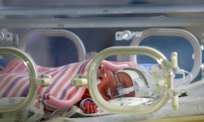 A one-day-old baby girl sleeps inside an incubator in the Neonatal Intensive Care Unit at Birmingham Women's Hospital in Birmingham, England on January 22, 2015. (Christopher Furlong/Getty Images)