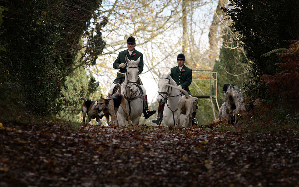 Master of the Beaufort Hunt, Ian Farquhar leads the hounds on the opening meet of the season for the Duke of Beaufort's Hunt in Badminton, England on Nov. 7, 2009. (Matt Cardy/Getty Images)