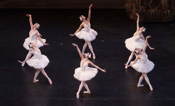 "A scene from ""Swan Lake"" (Bruce Zinger)"