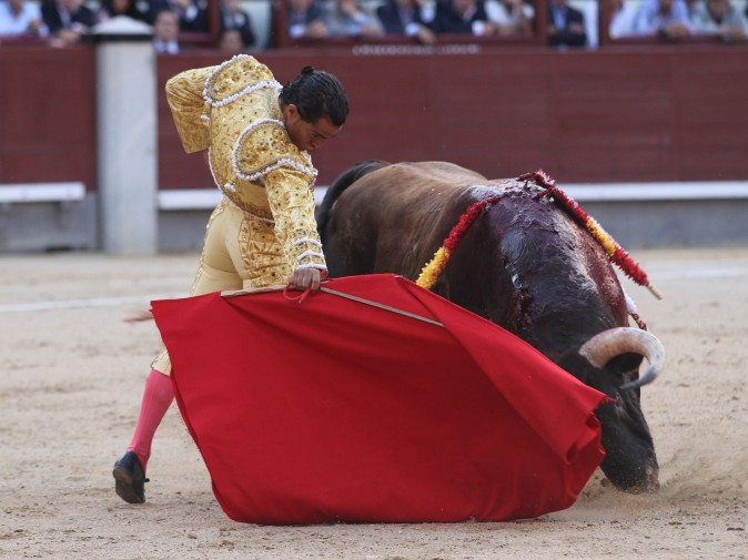 Spanish matador Ivan Fandino performs a pass to a bull during the San Isidro Feria at Las Ventas bullring in Madrid on June 4, 2014.    (ALBERTO SIMON/AFP/Getty Images)