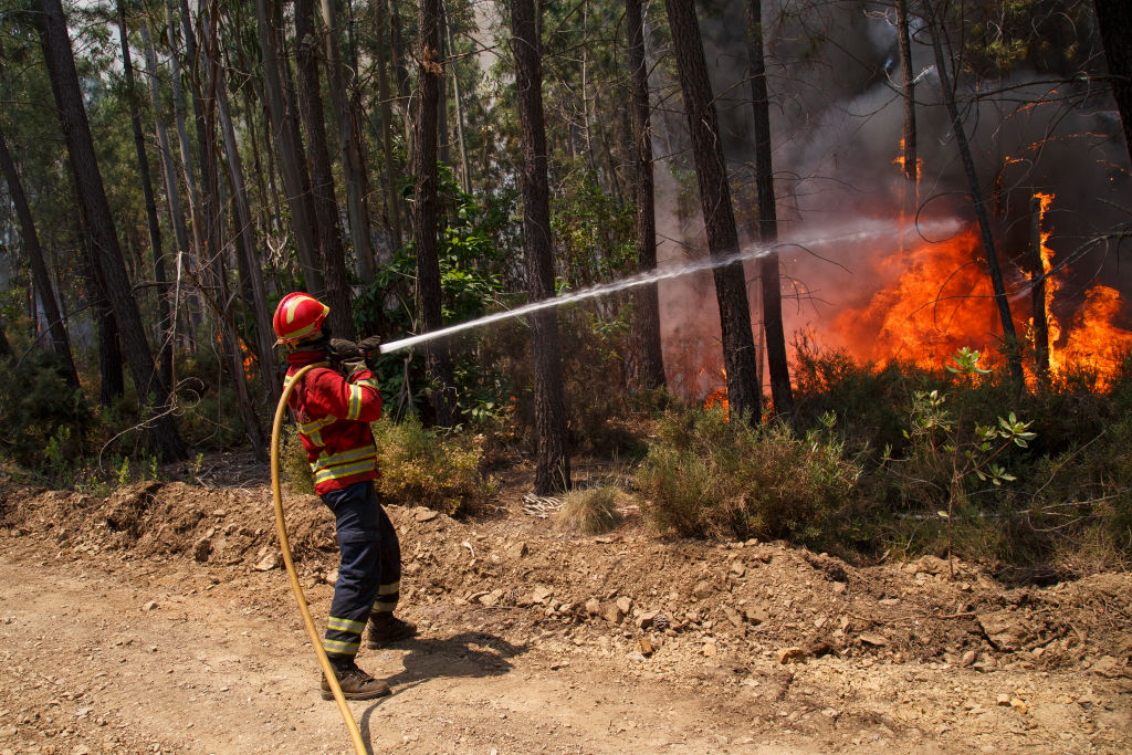 A firefighter battles a fire after a wildfire took dozens of lives on June 20, 2017 in near Picha, in Leiria district, Portugal. (Pablo Blazquez Dominguez/Getty Images)