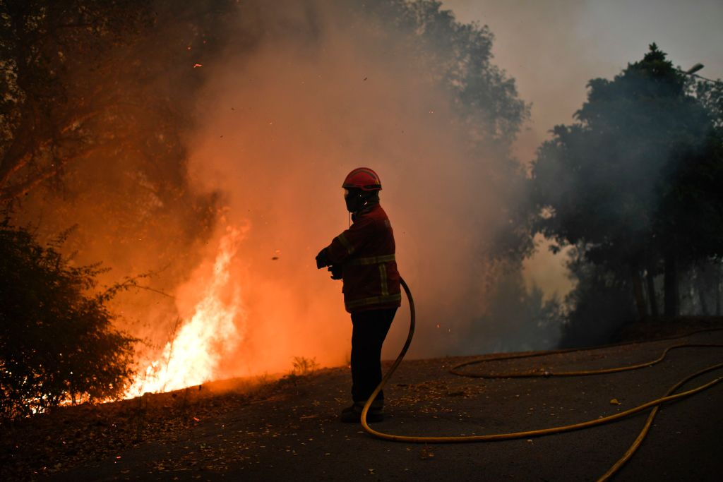 A firefighter combats a wildfire in Capelo, Gois, on June 20, 2017. (PATRICIA DE MELO MOREIRA/AFP/Getty Images)