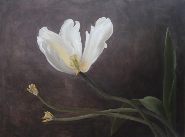 """The Last Tulip,"" 2017, by Katie G. Whipple. Oil on wood, 12 inches by 16 inches. (Courtesy of Katie G. Whipple)"
