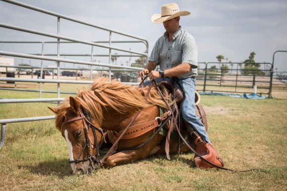 Border Patrol Agent and horse instructor Sean Davis with Vega, a horse named after fallen agent Javier Vega, Jr., in Edinburg, Texas, on May 26, 2017. Javier Vega was shot and killed by two illegal aliens when he attempted to take law enforcement action while he and his family were being robbed while out fishing on Aug. 3, 2014. (Benjamin Chasteen/The Epoch Times)