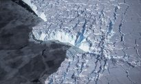 Antarctica Iceberg Break Not a Casualty of Climate Change