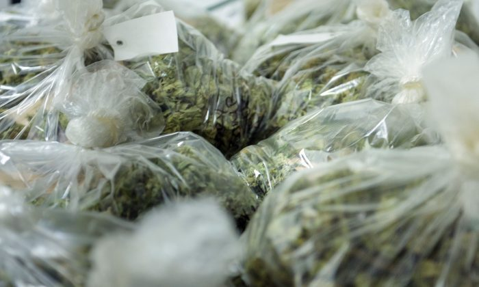 Police Arrest 16 and Seize $35M Worth of Pot in Atlanta Grow Houses