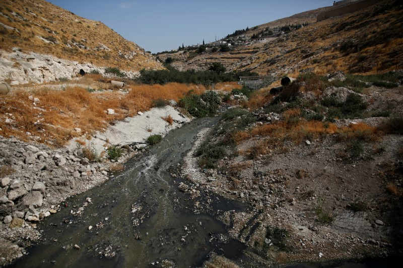Sewage flows in the Kidron Valley, on the outskirts of Jerusalem July 6, 2017. (REUTERS/Ronen Zvulun)