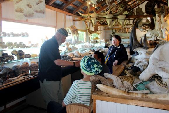 Musée du squelette on Île Verte boasts 300 animal skeletons. (Janna Graber)