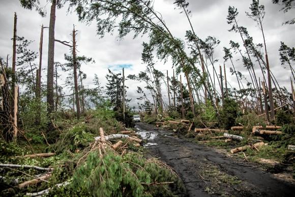 Broken trees are seen after a powerful storm near the village of Szuszek in northern Poland August 12, 2017. Picture taken August 12, 2017.  (Agencja Gazeta/Renata Dbrowska via Reuters)