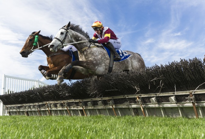 Martin Kelly riding Marilisa (R) and Arron Lynch riding Shez Eltraordinary jump the 2nd Last hurdle with before Arron Lynch won Race 2 City of Ballarat Maiden Hurdle during The Grand Nation Steeple Day in Ballarat, Australia, on Aug. 20, 2017. (Vince Caligiuri/Getty Images)