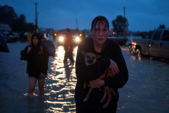 A woman holds her dog as she arrives to high ground after evacuating her home along Tidwell Road in east Houston. (REUTERS/Adrees Latif)