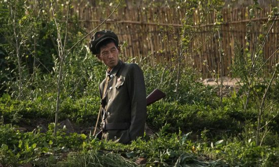 North Korean Soldiers Raiding Farms After Food Provisions Cut