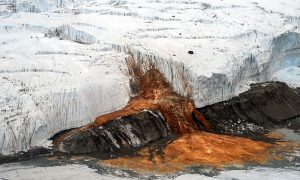 'Blood Falls' mystery in Antarctica baffled us for a century—when you see the photos, it's easy to see why