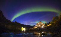 Nature's Free Light Show