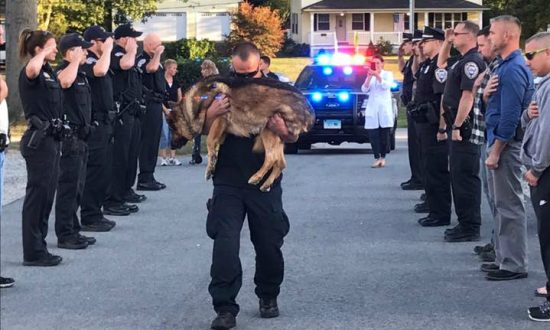 Police Dog Gets Emotional Farewell Before Being Euthanized